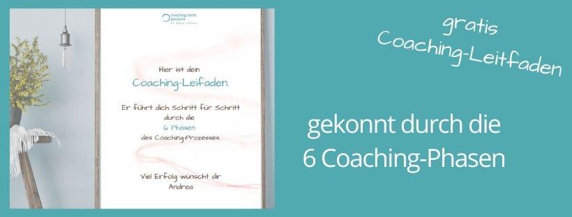 Coaching-Leitfaden